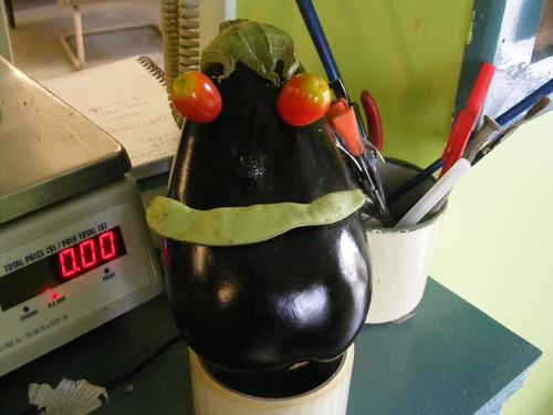 Mr. Egg Plant Head