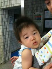 朝散歩とらちゃん(2011/9/14)