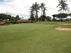 WAIKELE COUNTRY CLUB 246