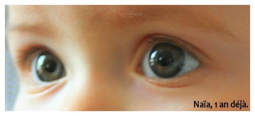 Des yeux pleins de vie