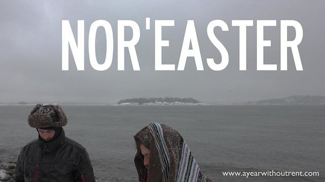 noreaster title