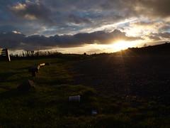 (DanielHughes21) Tags: life sunset shadow sky sun cold sunrise bench scotland town view fife hill sunny rise glenrothes lomand falkland