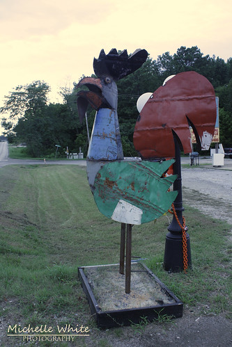 Big Metal Rooster 2