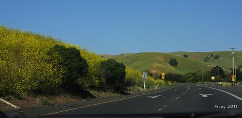 Highway 4 36