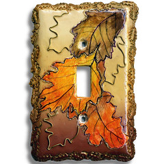 Elegant Light Switch by Janie B.