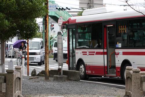 夏の通り雨 / Rainy Bus Stop