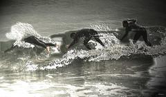 Surf-El final de la ola (chucafox-Alicia-) Tags: luz water photoshop atardecer luces mar agua surf asturias playa contraste olas hdr asturies acrobacias 1000d canon1000d deportesverano