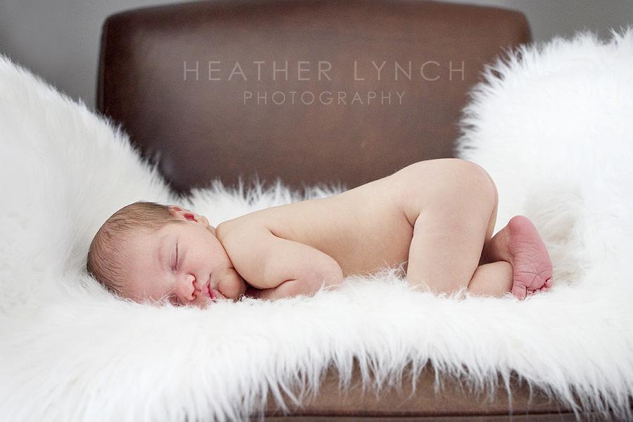 HeatherLynchPhotography_ELL06