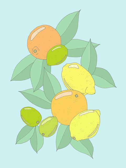 citrus305