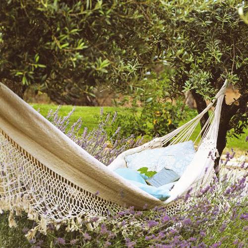 9- hammock.jpg