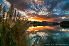 Desert Shores Reflection (100,000 views) (Bjrn Burton) Tags: sunset reflection water reeds nikon lasvegas nevada hdr summerlin desertshores d300s tokina1116mm28 bjornburton