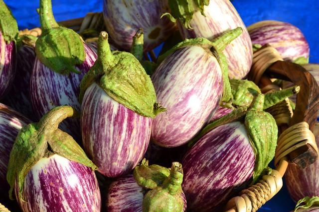 Sunny Eggplants