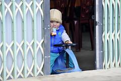103_LAO85260014 (TC Yuen) Tags: vietnam sapa hmong terracefarming locai