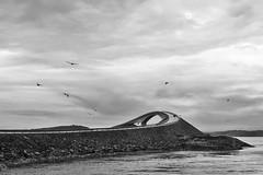 Atlanterhavsvegen (Mixmaster) Tags: road norway norge fuji norwegen atlantic finepix fujifilm romsdal atlanterhavsveien x100 atlanterhavsvegen mre fujiguys