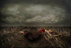 the last harvest (Blue eyed synaesthete) Tags: autumn selfportrait storm fall weather contrast dark death harvest surrender hibernate fineartphotography darkart lesbrumestextures