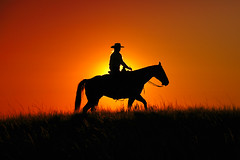 Cowgirl Silhouette (www.toddklassy.com) Tags: life ranch lighting light sunset shadow red summer sky horse orange woman sunlight abstract black girl beautiful animal sport yellow horizontal america sunrise dark hair outdoors person golden evening cowboy montana warm exposure mt ride adult emotion background grunge working warmth clear riding havre lensflare western americana rays recreation backlit through copyspace cowgirl outline cowboyhat shining wildwest horseback americanwest ranching quarterhorse stockphoto firstlight stockphotography endoftheday travelphotography featureless designelement reigns colorimage beautyinnature msunorthern unrecognizableperson russellcountry toddklassy
