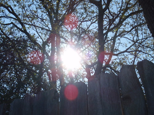 Fence with Sunburst