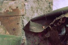 daddy (Viking Astronaut Asa [[Kryptomaisonaut]]) Tags: wallpaper abandoned floral bug daddy spider long legs decay creepy fold dust abandonment daddylonglegs longlegs