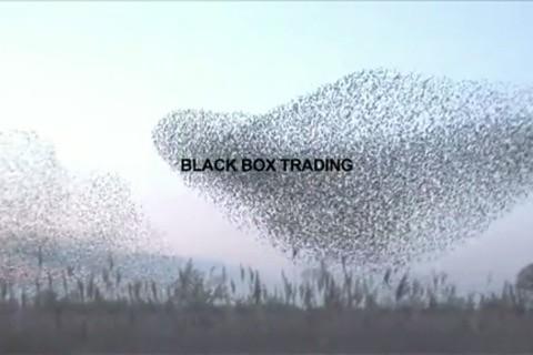 1000001719