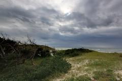 Dune (2) (Laubegaster Ufer) Tags: balticsea ostsee hdr canonefs1022mmf3545usm dars