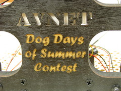 Karate Chop - Avnet Dog Days of Summer Contest using a PIC 16F1827_37 (abbtech) Tags: summer dog game simon alan ir contest pic days led beam karate chop gadgets entry transistor plywood breadboard hacked reaction mdf microcontroller parekh piezo avnet 16f1827