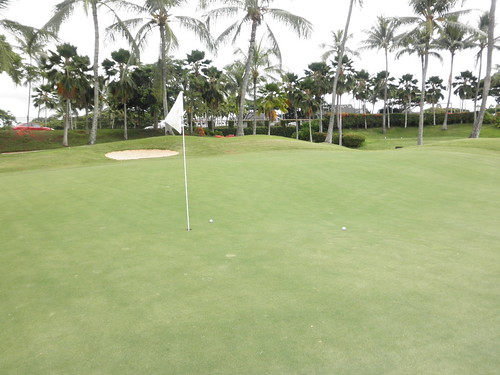 WAIKELE COUNTRY CLUB 201
