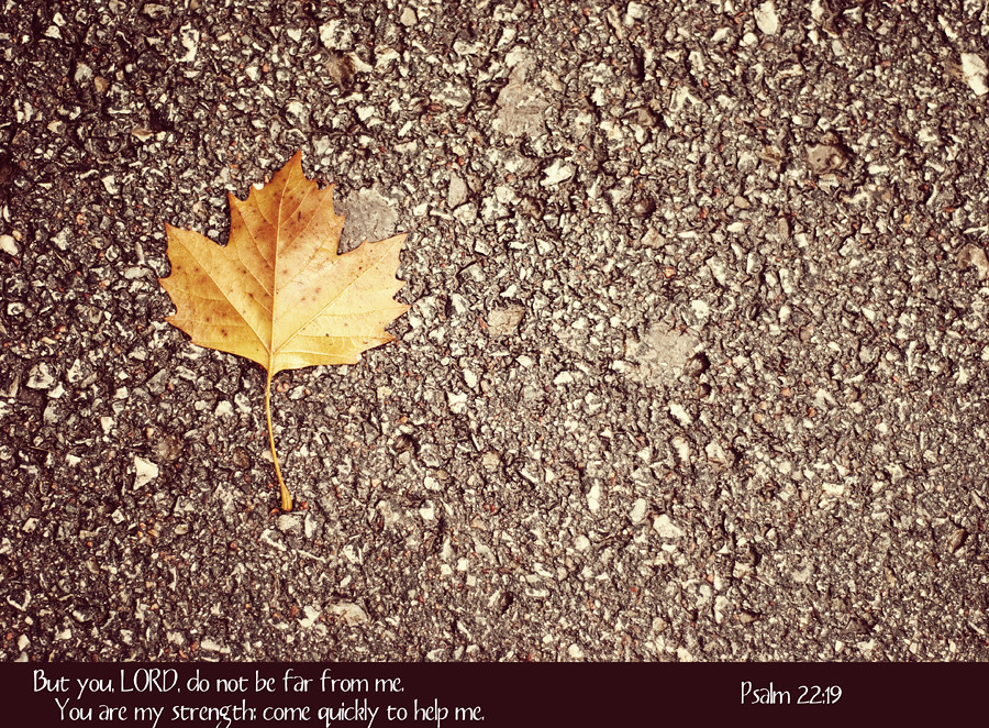 Maple-Leaf-Psalm22-19
