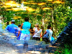 Water Art: Attentive Listeners (peggyhr) Tags: blue friends white canada black green water leaves yellow forest reflections puddle grey pebbles tourists textures alberta excellent dirtroad reflexions bushes fortedmonton tiretracks poplartrees dappledsunshine peggyhr heartawards thedigitographer 100commentgroup artofimages thebestvisions pegasusaward mygearandme ringexcellence blinkagain avpa1maingroup parallelworldpuddlesonly p1080360ap flippedpuddlereflection