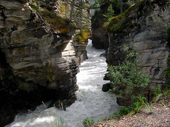 Maligne Canyon Near Jasper (Images by maXx) Tags: water canon river holidays jasper powershot pointshoot maligne a20 mygearandme mygearandmepremium mygearandmebronze mygearandmesilver