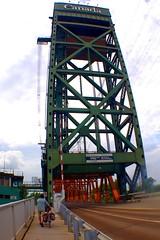 IMGP7503