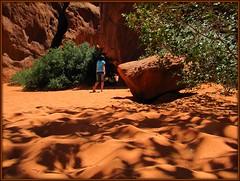 shadows and sand (f l a m i n g o) Tags: park light shadow summer hot tree texture dark utah ut sand arch desert fine arches national moab natl