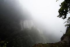 Foggy view from the chalk cliffs (iPhotograph) Tags: cliff fog germany geotagged rgen knigsstuhl chalkcliff jasmund 2485mmf3545g d700 geo:lat=5457332607093372 geo:lon=1366224355401973