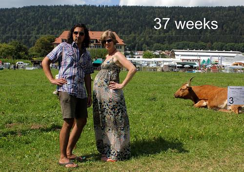 wee grub: 37weeks