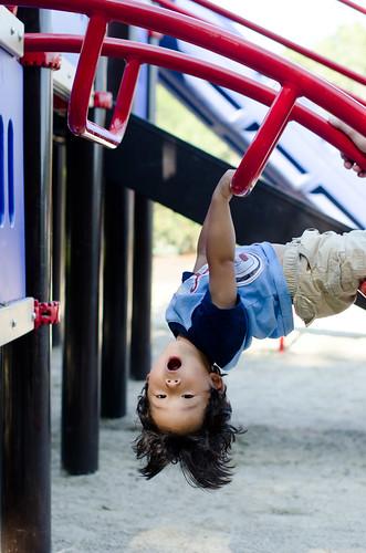 playground_8_20-7