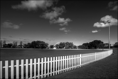 Midday Sun - White Picket Fence