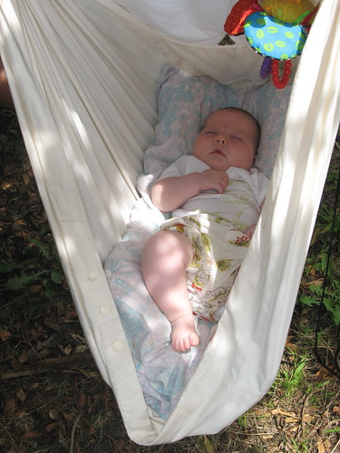 img 3409 the golden adventures of     favourite things  natures sway baby hammock  rh   verydarkhorse blogspot