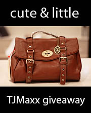 kileen cute and little TJMaxx Vieta Lucille satchel giveaway