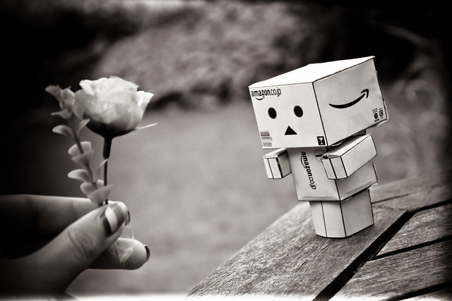 Danbo falls in love.