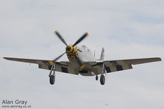 G-MSTG NORTH AMERICAN P-51D MUSTANG 124-48271 - 110828 - Little Gransden - Alan Gray - IMG_0731