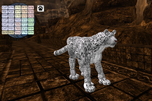 Being a snow leopard in Avaria