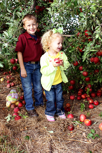 Kids-under-tree-apples-galore