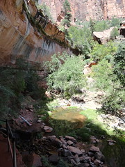DSC00130 (johnspoelder) Tags: zion narrows