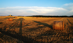 Long shadows (Gregor  Samsa) Tags: sunset shadow field highlands shadows view czech dusk harvest illumination straw august fields czechrepublic hay bales overlook bohemia haybales strawbales vysoina esko eskrepublika vysocina eskomoravskvrchovina