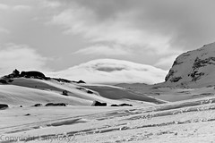 Limit between snow and clouds? (LadyRoxy2) Tags: blackandwhite bw cloud mountain snow ice norway montagne canon noiretblanc neige nuage glace norvge finse 500d hardangerjokulen stunningphotogpin