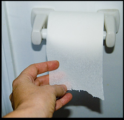 toilet-paper-hangs