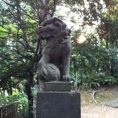夕日を背に、鞠を持つ狛犬
