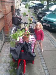Cargo Bike Action