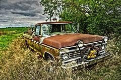 Ford HDR II