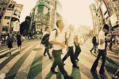 Day 230/365 - Day in Tokyo (Connor Surdi | www.connorsurdi.com) Tags: 2 canon tokyo shinjuku mark fisheye 5d jdm