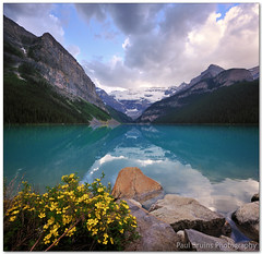 Lake Louise (AKA. The Most Photographed Bush of Flowers on the Planet) (Panorama Paul) Tags: lake canada vanishingpoint alberta lakelouise banffnationalpark nohdr sigmalenses nikfilters vertorama nikond300 wwwpaulbruinscoza paulbruinsphotography